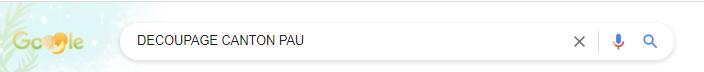 Google decoupage canton pau